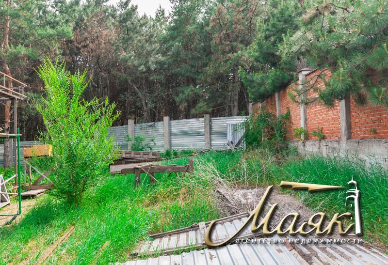 Дом на Великом Лугу в сосновом лесу.